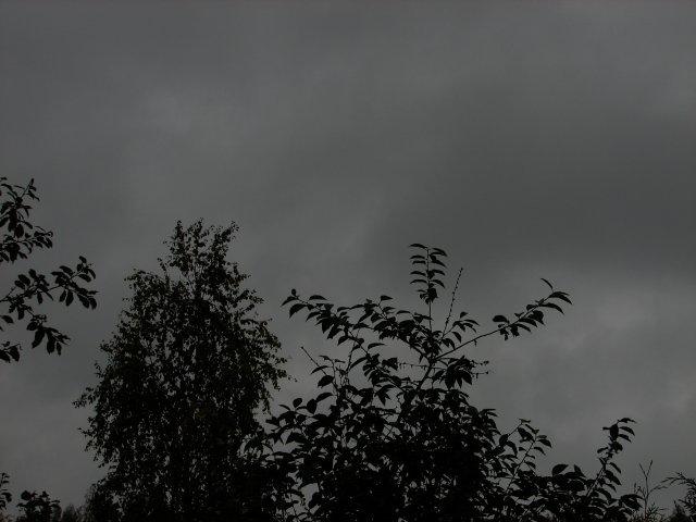 902613.jpg
